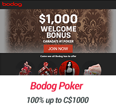 bodog-poker-review-screenshot-1