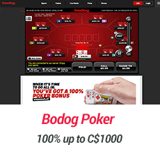 bodog-poker-review-screenshot-3